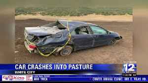 Car crashes into White City pasture, deputies search for driver [Video]