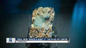 Art exhibition at the Paine Art Center [Video]