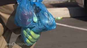 Plastic pollution becoming problem in Northeast Ohio waterways [Video]