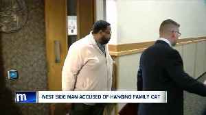 Police: Man killed children's cat then sent them pictures of their dead pet [Video]