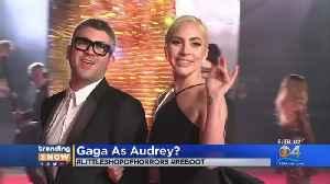 Trending: Gaga In New Movie? [Video]