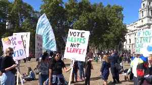 'Vote leaves - not leave!' Climate change activists take over London with banners and flags [Video]