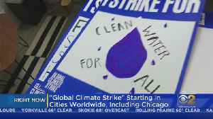 Youth Activists Leading Global Climate Strike [Video]
