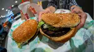 Opinion: Impossible Burgers Are Not Healthier Than Beef Burgers [Video]