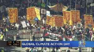 'Climate Strike' Rallies In Bay Area, Worldwide Urge Action On Climate Change [Video]