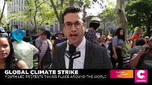 In NYC, and Across the Globe, Students March For Action on Climate Change [Video]