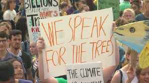 Youths Take To Streets For International Climate Strike [Video]