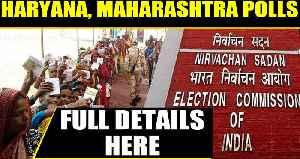 News video: EC announces Haryana, Maharashtra assembly election dates