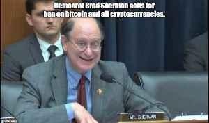 Congressman Brad Sherman calls for bitcoin ban [Video]