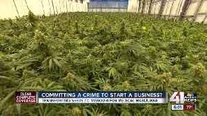 'Immaculate Conception' needed to kickstart medical marijuana industry in Missouri [Video]