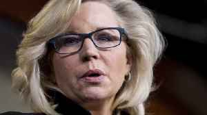 Rand Paul Tries To Derail Liz Cheney's Senate Ambitions [Video]