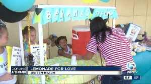 Lemonade For Love fundraiser held in Jensen Beach [Video]