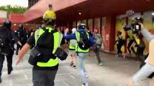 Hong Kong police storm shopping mall in Sha Tin [Video]