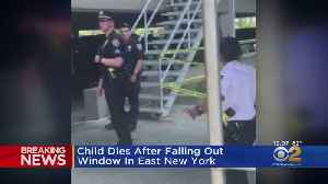 Child Dies After Falling Out Of Window In East New York [Video]