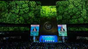World Leaders Rebuked For 'Empty Words' At U.N. Climate Summit [Video]