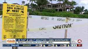 45 turtle light violations investigated in Marco Island [Video]