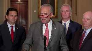 Releasing call transcript doesn't 'come close': Schumer [Video]