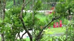 Rivers rise in Puerto Rico ahead of Tropical Storm Karen [Video]