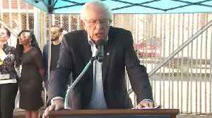 Sanders Slumps In Polls [Video]