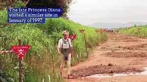 Prince Harry Retraces Princess Diana's Steps [Video]