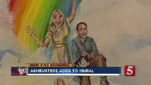 NewsChannel 5 Meteorologists added to mural at Ashbusters Chimney Service [Video]