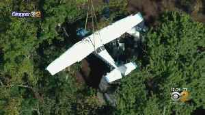 Small Plane Stuck In Trees After Crash Finally Brought Down [Video]