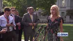 Kellyanne Conway accuses Pelosi of doing bidding of Democrat men [Video]