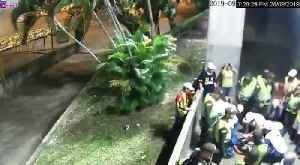 'El Mono', el hincha del Bucaramanga que murió en un accidente en el estadio [Video]