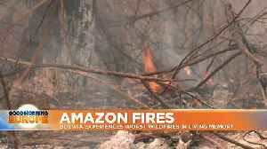 Amazon Fires: Bolivia experiences worst wildfires in living memory [Video]