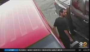 Search Continues For Alleged Car Thief [Video]