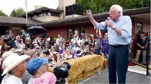Bernie Sanders Campaign Is In Decline [Video]