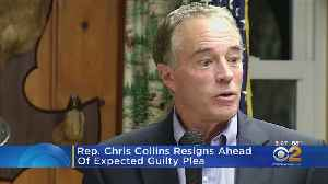 News video: Rep. Chris Collins Resigns Ahead Of Expected Guilty Plea