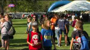 Magna Labor Day picnic attracts hundreds [Video]