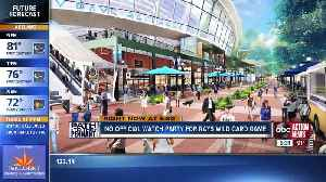 Fans ready to support Rays during playoffs, despite uncertain future [Video]