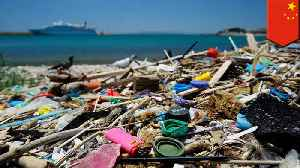 News video: Plastic waste in remote Atlantic island comes from ships: Report