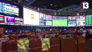 Vegas sportsbooks report record handle on VGK opening night [Video]