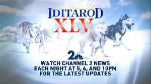 Turn to Channel 2 for Iditarod XLV live reports and updates [Video]