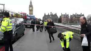 7 Arrests Made in Attack Near Britain's Parliament [Video]
