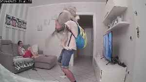 Husky Can't Contain Excitement Upon Owner's Return Home [Video]