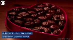 Valentines Day [Video]