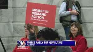 Moms Rally for 'Common Sense' Gun Laws [Video]
