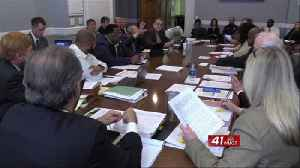 Mayor Reichert breaks tie vote, denies reconsideration for special election date [Video]