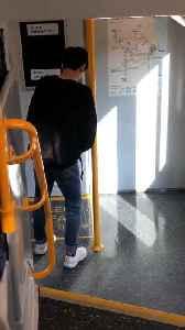 Man Uses Train as Toilet [Video]