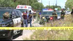 Border Patrol Agent in Fatal Shooting Near Laredo on Administrative Leave [Video]
