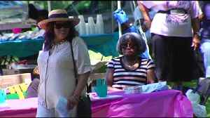 VIDEO: Reading City Park Gathering Celebrates African-American Achievements [Video]