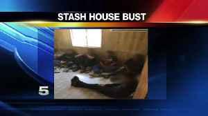 Stash House Bust in Starr Co., 8 in Custody [Video]