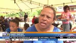 Migrant Caravan Impacting Midterms [Video]