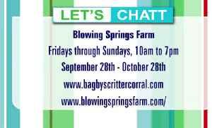 Rock City's Blowing Springs Farm plus Rocktoberfest this month! [Video]