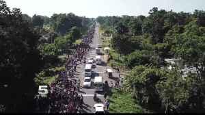 Migrants in Caravan Face Criminal Record Checks [Video]