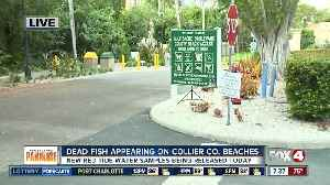 Collier County to sample beaches for red tide [Video]